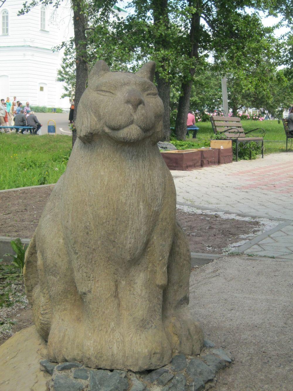 Казанский котяра