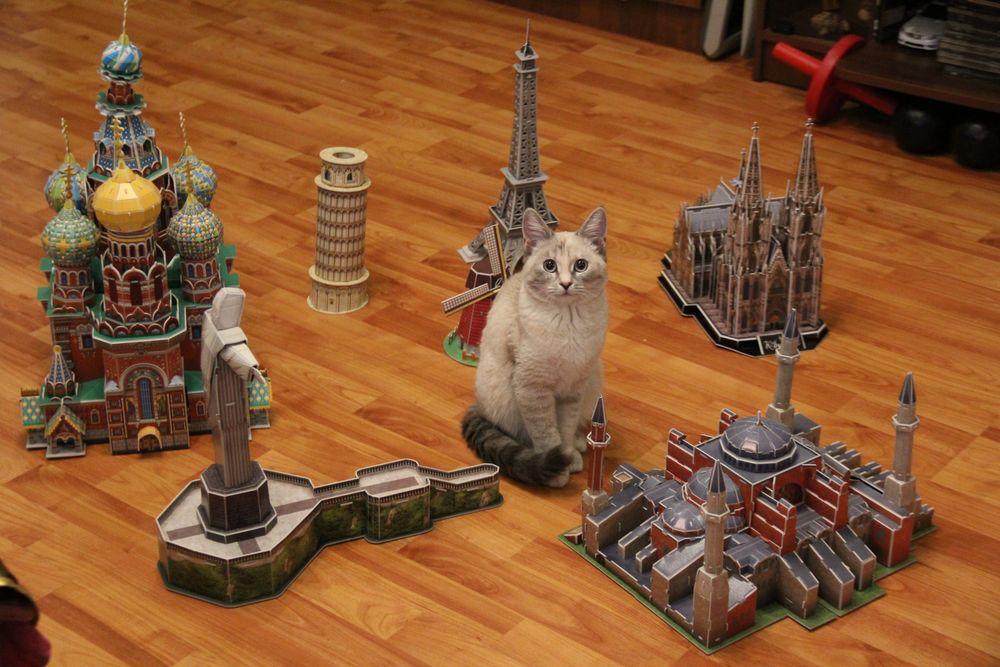 Василиса и 3D пазлы